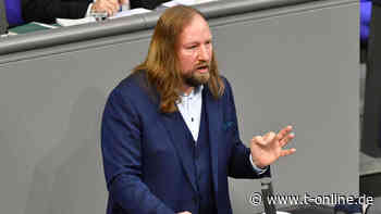 Grüne: Anton Hofreiter kassiert Kritik für Vorstoß zu Einfamilienhäusern - t-online.de