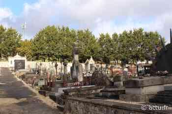 Des vols de fleurs au cimetière de Lizy-sur-Ourcq ? - actu.fr