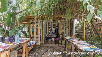 Escalas descontracturadas en La Paloma y La Pedrera - Revista Galeria en Montevideo Portal - Montevideo Portal