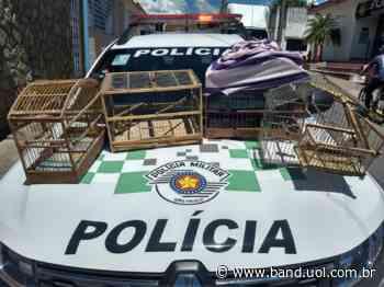 Homem é preso por caça ilegal em Cachoeira Paulista - uol.com.br