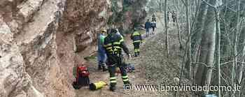 Rincorre il suo cane in fuga Bloccata nel dirupo a Canzo - La Provincia di Como