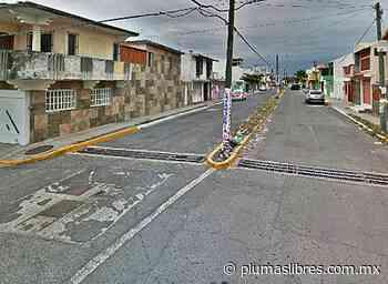 Total inseguridad viven habitantes del fraccionamiento Villa Rica de Veracruz - plumas libres