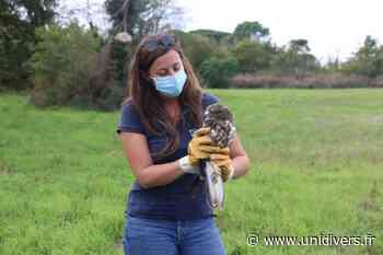 Comment aider la faune sauvage en détresse? Audenge - Unidivers