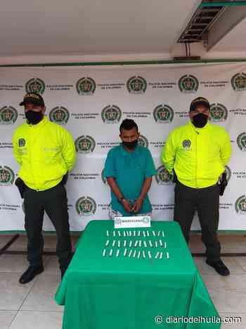 Capturado alias el «Zarco» por tráfico de estupefacientes en Campoalegre - Diario del Huila