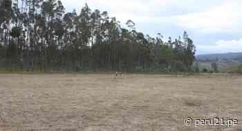 Amazonas: Dan terreno a EsSalud para construcción de nuevo hospital en Chachapoyas - Diario Perú21