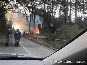 Pequeño fuego sofocado en el Monte Igeldo - Donostitik.com