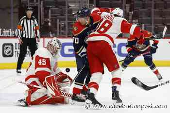 Mathias Brome's goal holds up as Red Wings dispatch Panthers - Cape Breton Post