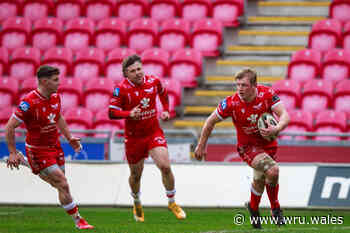 Morgan shines as Scarlets thrash Benetton - Welsh Rugby Union