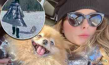 Kate Beckinsale twins with her dog Myf as they both don silver jackets to play in the snow - Daily Mail