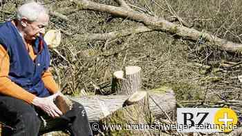 Naturschützer und Vogelkundler Prof. Hans Oelke ist tot