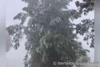 Reportan temperaturas de 0ºC en Altotonga y Perote; también hubo cencellada en Las Vigas - Libertadbajopalabra.com