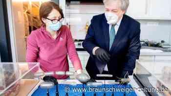 Pest bis Corona: Schau in Hildesheim über den Fluch der Seuchen