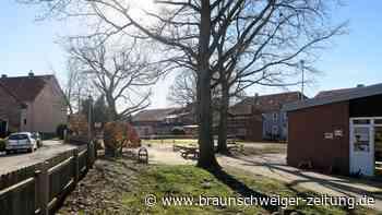 Wolfenbüttel bietet Corona-Schnelltests vor Sitzungen an