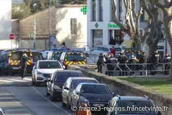 Hérault : les Pailhasses étaient dans les rues de Cournonterral malgré l'interdiction du carnaval, les gendarm - France 3 Régions