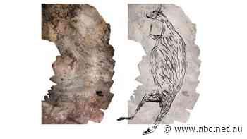 This 17,300-year-old kangaroo is Australia's oldest known rock art