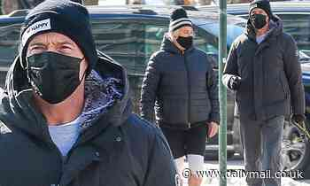 Hugh Jackman and wife Deborra-Lee Furness walk their dogs in snow-covered New York City