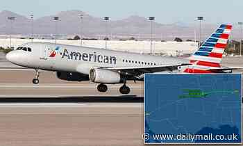 AA flight has encounter with 'cylindrical object' over New Mexico