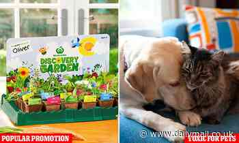 Warning to pet owners over Woolworths Discovery Garden 'toxic' plants
