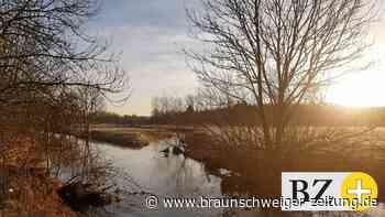 Stemmwiesen-Projekt sorgt für Hochwasserschutz in Lehre