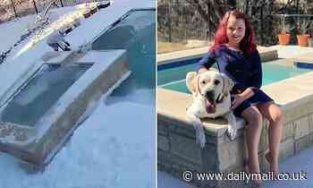 Girl, 8, rescues her dog when he falls though the ice on her swimming pool
