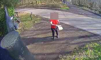 Moment 'incompetent' delivery driver hurls Amazon parcel over front gate