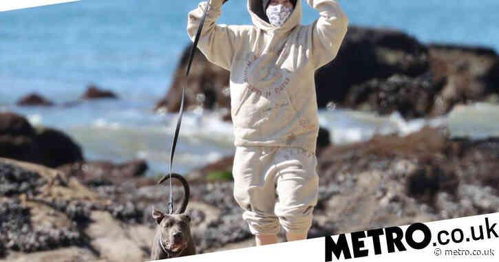 Billie Eilish does downtime right as she enjoys beach walk with dog Shark ahead of documentary release