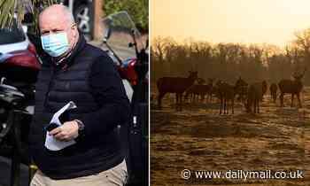 Businessman fined £800 after dog caused deer stampede in London park that left boy in hospital