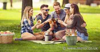 Garden parties and BBQs at Easter - what you can and can't do from March 29