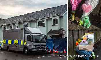 Exeter house fire: Girl, 7, still fighting for life in hospital