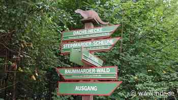 Otterzentrum Hankensbüttel wächst um zwei Hektar - NDR.de