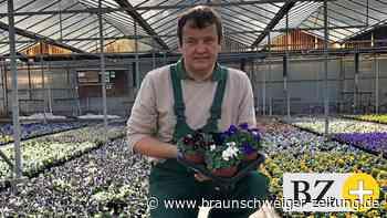 Wolfenbüttels Gärtnereien erleben großen Zuspruch
