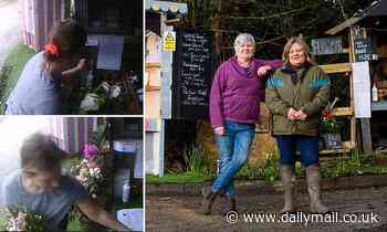 Family are stunned to find people raiding veg they leave out for locals - without leaving a penny