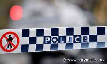 Bonnyrigg Heights: Teenage boy, 17, stabbed with a machete during home invasion