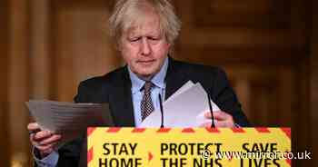 'Boris Johnson will never be forgiven if he dashes nation's holiday dreams'