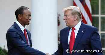 """Donald Trump sends best wishes to """"true champion"""" Tiger Woods after car crash"""