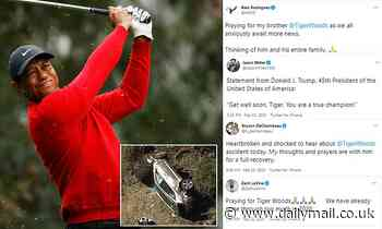 Tiger Woods car crash: Donald Trump and ARod James send wishes