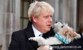 Boris Johnson says 'the dog stays' amid rumours he is losing patience with the feisty Jack Russell