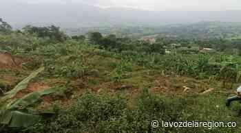 12 viviendas y una escuela a punto de colapsar en Timaná - Huila