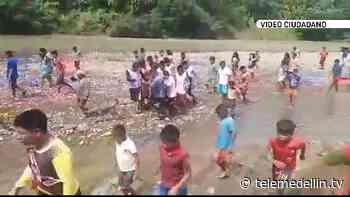 Alerta por desplazamiento y confinamiento de familias en el Bajo Baudó - Telemedellín