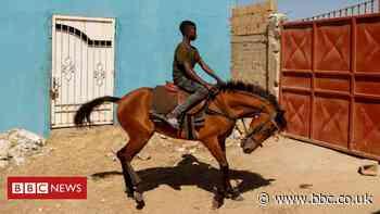 Senegal's teenage jockey races to fame