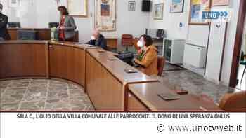 Sala Consilina, l'olio della Villa comunale alle parrocchie: il dono di Una Speranza Onlus - Uno Tv Web