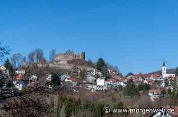 Burgstadt will Heilklima-Region mitgründen - Mannheimer Morgen