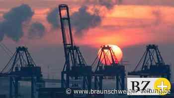 Drogen: Rekordfund im Hamburger Hafen – Zoll findet 16 Tonnen Kokain