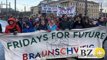 """""""Fridays for Future"""" in Braunschweig: Wir streiken wieder!"""