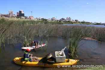 Intensa tarea para rescatar las lagunas de Mogotes de la desidia - La Capital de Mar del Plata
