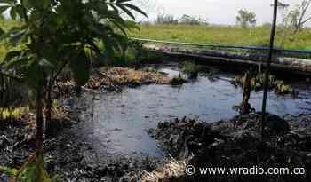 Tragedia ambiental por derrame de petróleo en Puerto Boyacá - W Radio
