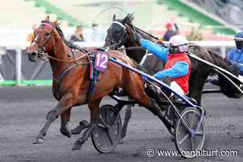 Dimanche à Vincennes, Pick5 Prix Comte Pierre de Montesson - Critérium des Jeunes (Gr. I). IN THE MONEY sur la plus haute marche - Canal Turf