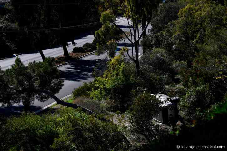 LA County To Review Steep Stretch Of Road Where Tiger Woods Crashed Described As Dangerous: 'We Go Through Brakes A Lot'