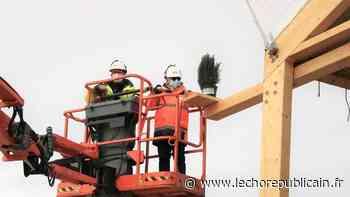 Un sapin sur le chantier du dojo d'Auneau-Bleury-Saint-Symphorien pour symboliser le début de la construction - Echo Républicain
