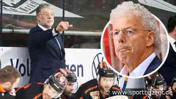 Grizzlys Wolfsburg auf Kurs, Gespräche mit Coach Pat Cortina - Sportbuzzer